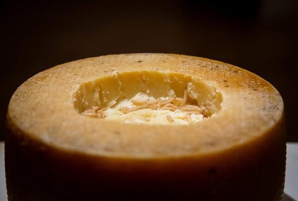 Музей отвратительной еды выставляет экзотические деликатесы В шведском городе Мальмё год назад открылся Музей отвратительной еды, бросающий вызов тому, что посетители считают съедобным. Здесь не