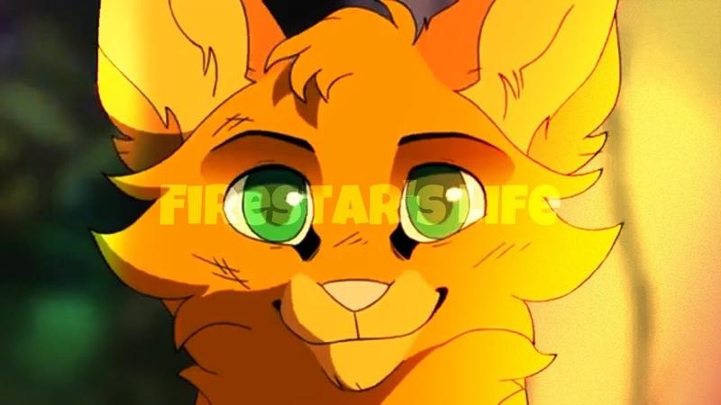 🔥[ Firestar's Life / Animash ] 🔥