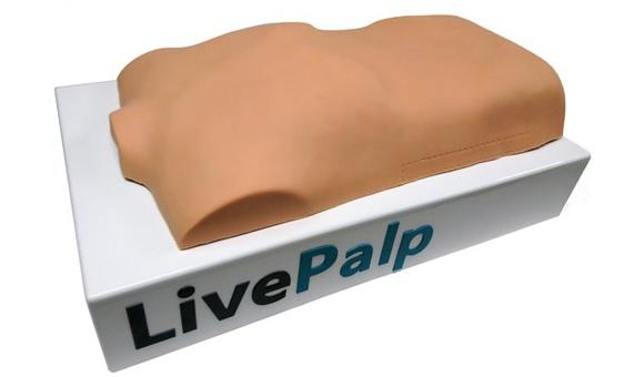 Виртуальный симулятор пальпации LivePalp