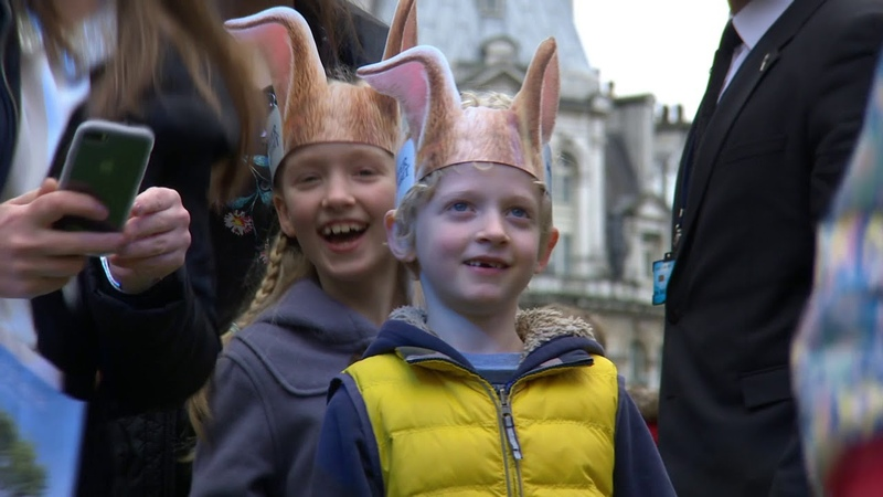 Peter Rabbit UK Premiere BRoll Official video