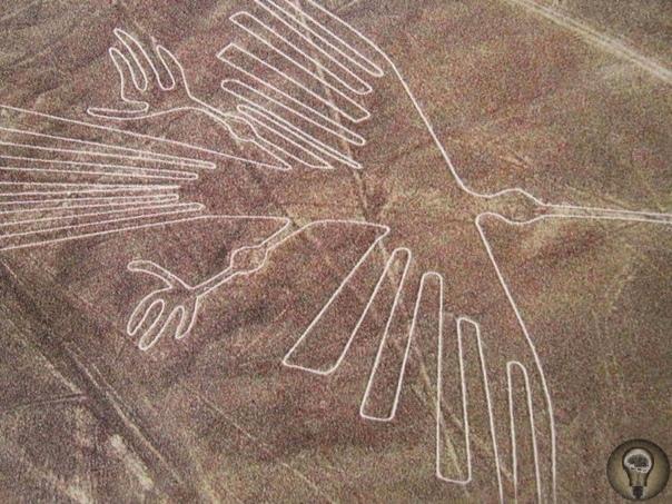 Древние народы рисовали на Земле рисунки, видные только с большой высоты Наша планета очень разнообразна, поэтому если вы вдруг считаете, что видели все не стоит торопиться с выводами. В мире