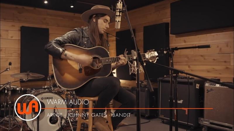 Warm Audio Johnny Gates Bandit WA 251 WA 87 WA 84