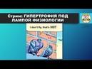 ГИПЕРТРОФИЯ ПОД ЛАМПОЙ ФИЗИОЛОГИИ