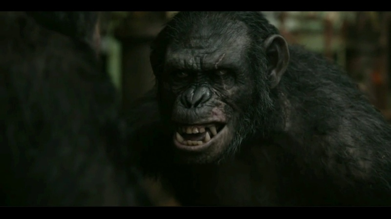 Planet of the apes: Koba - Animal I have become