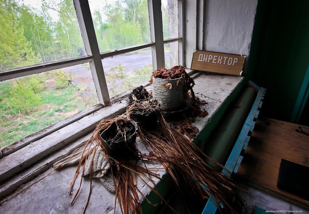 Заброшенная сельская школа