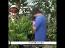 хоши и растения 🌱