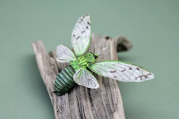 Животные и насекомые сделанные из бумаги.