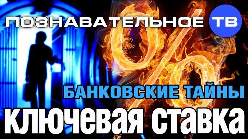 Банковские тайны Ключевая ставка Познавательное ТВ Дмитрий Еньков