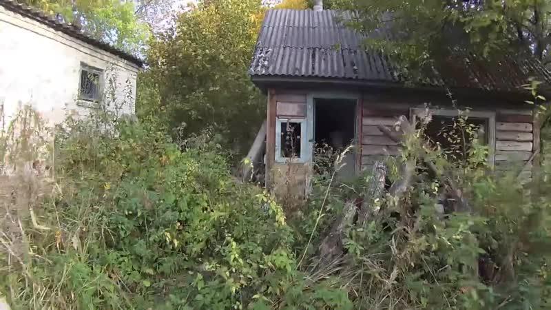 Зашкалило дозиметр в Рыжем лесу Побег из Чернобыля