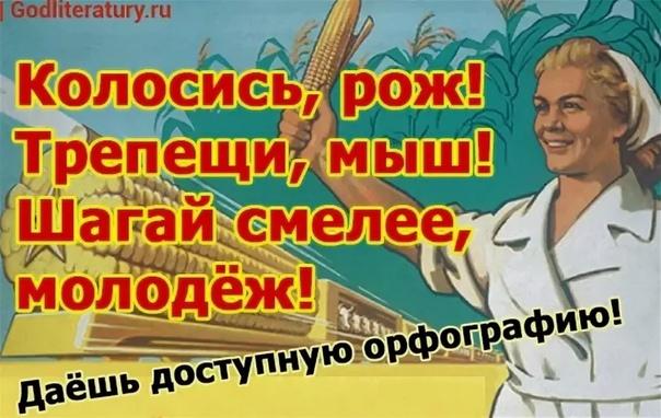 """ЯЗЫКОВАЯ РЕФОРМА 1964 ГОДА И """"ЯЗЫК ПАДОНКАФФ"""""""