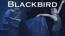 Blackbird The Beatles Piano Dance Duet ft Selena Moshell Jonny May