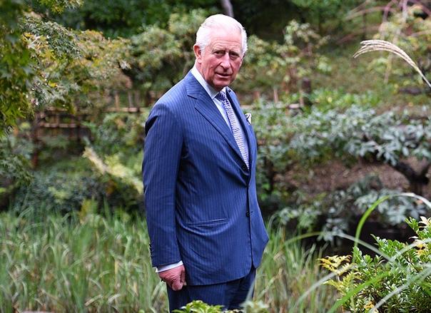 """Новый документальный фильм о принце Чарльзе назвали """"образцовым"""" и посоветовали к просмотру принцу Гарри и Меган Маркл"""