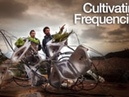 Cultivating Frequencies 1.0