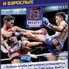 Муай Тай   Тайский бокс   Клуб Квадрат - Москва