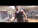 Sergi Constance Aesthetic God Bodybuilding Motivation YouTube 360p