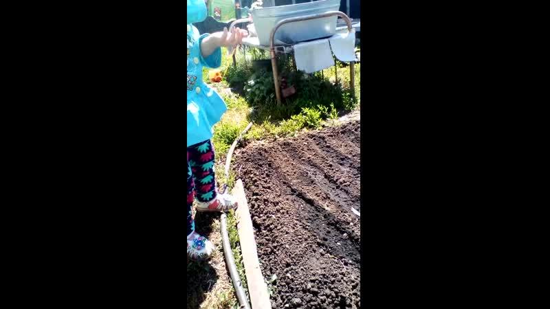 13 06 19 сажаем семена астры наша помощница