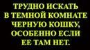 Папилломы / Иммунитет / Онкология