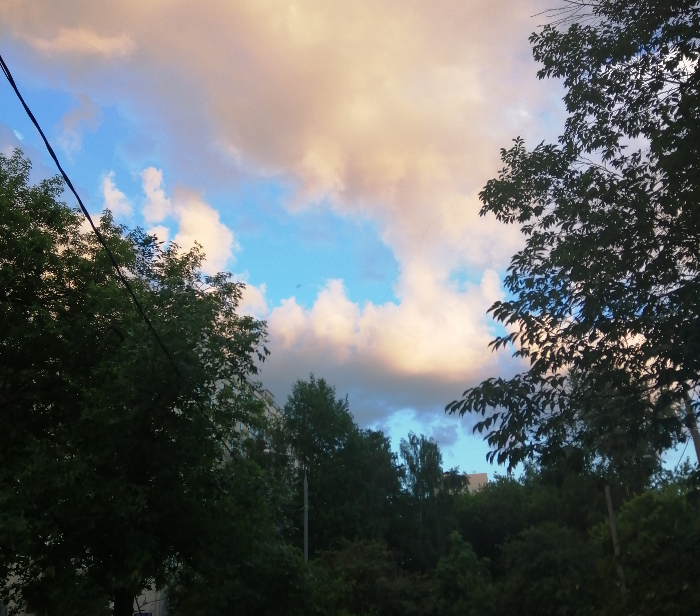 af205280c71a Благо Шаттен предложил гулять под зонтами и зонты мы взяли, но уже зря,  просто носили их в руках. Небо очень красивого цвета после дождя.