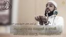 Махмуд Аль Хасанат На кого из людей в этой жизни я могу надеяться НОВИНКА 2019