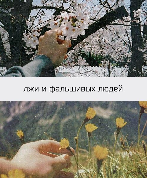 — A дальше что?