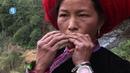 Jews harp / Guimbarde - Hmong - Vietnam