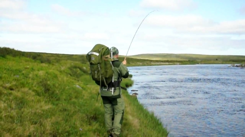 Drilling a big brown trout in Litza, Kola