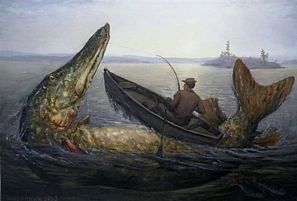 Гигантская щука: размер, вес. Самая большая пойманная щука