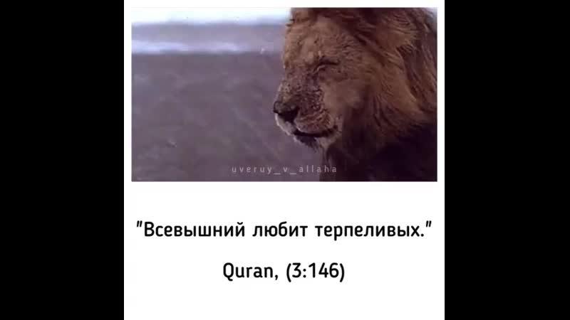Uveruy_v_allahaBw_I0n8DzkR.mp4