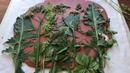 Imprints of Plants/ Plaster/Tutorial/Отпечатки растений/ Мастер-класс/ ПОЛЕВЫЕ ТРАВЫ