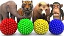 Aprenda nombre y sonido de los animales con un xilófono de martillo de madera Animales para niños