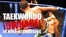 Taekwondo Highlights - MMA Kickboxing TKD Domination