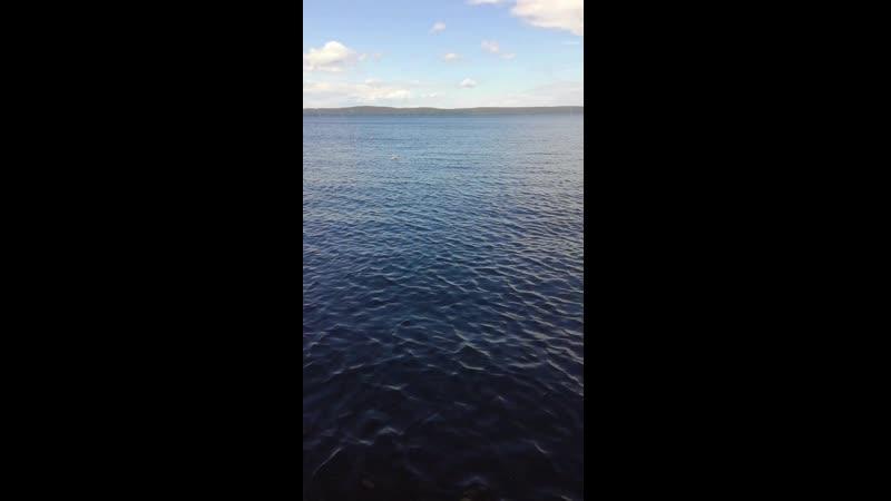 Онежское озеро, аллея Современного искусства, г. Петрозаводск.