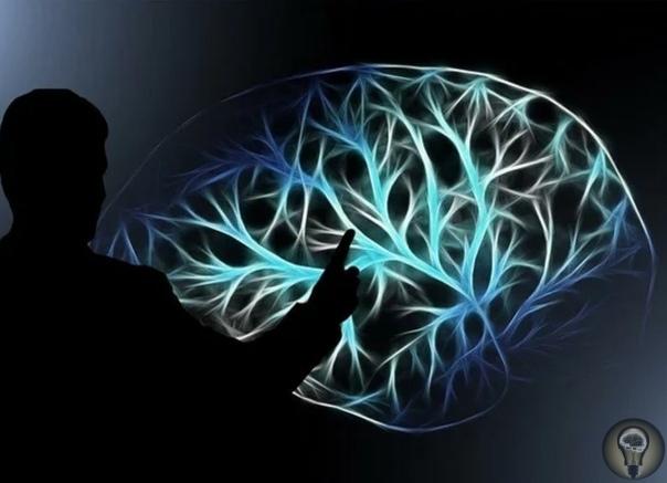 Что случилось с человеческим мозгом