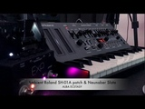 AMBIENT Roland SH-01A SEQUENCE &amp NEUNABER Slate DELAY