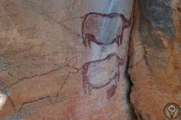 Редкое место, где сохранились тысячелетние наскальные рисунки Есть в западной части Ботсваны неподалеку от границы с Намибией среди пустынных равнин Калахари уникальная достопримечательность.