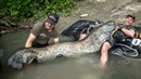 Сом ГИГАНТ, трофейный речной монстр! Самая большая рыба в жизни.