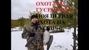 Охота на гусей 2019 Моя первая охота С хуглу ренова huglu renova
