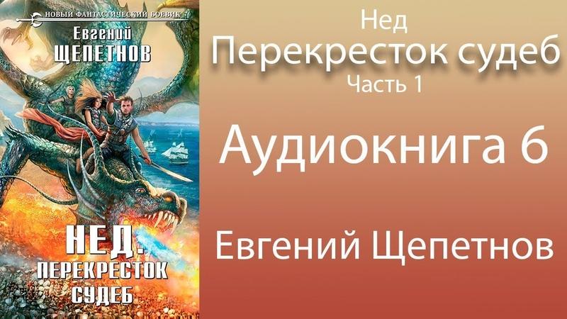 Евгений Щепетнов Нед Перекресток судеб 6 книга из 6 Часть 1 Аудиокнига