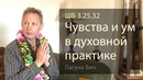 2019-04-06 - ШБ 3.25.32 - Чувства и ум в духовной практике (Домашняя программа, Лагуна Бич)