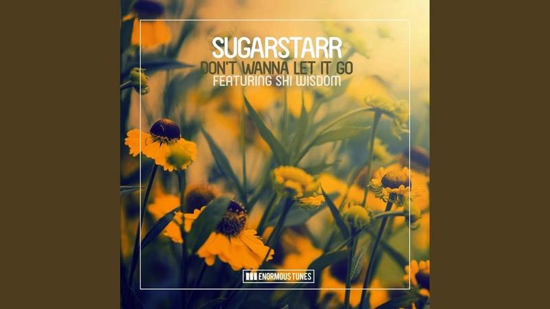 Dont Wanna Let It Go (Radio Mix)