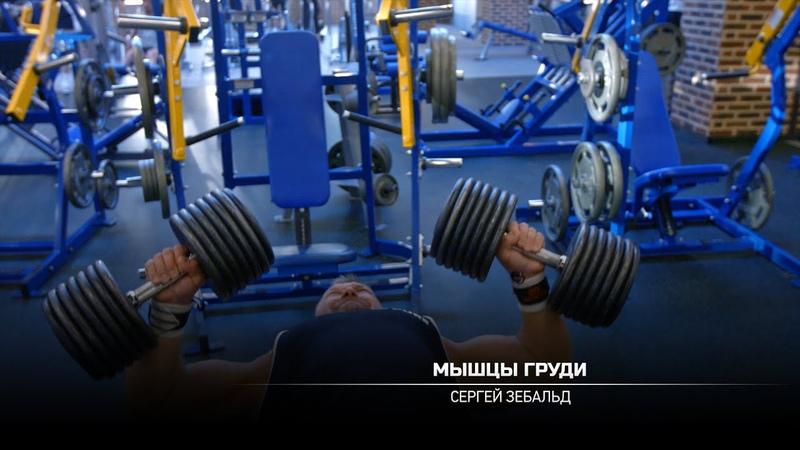 Тренировка мышц груди Сергей Зебальд
