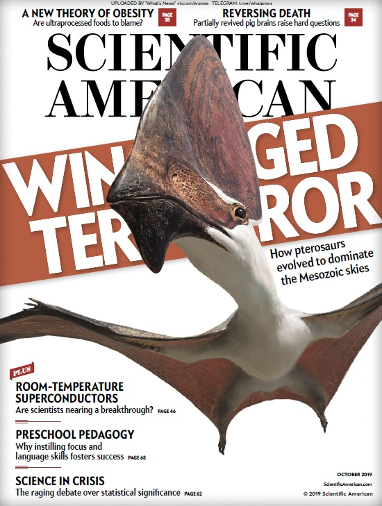 Scientific American - October 2019