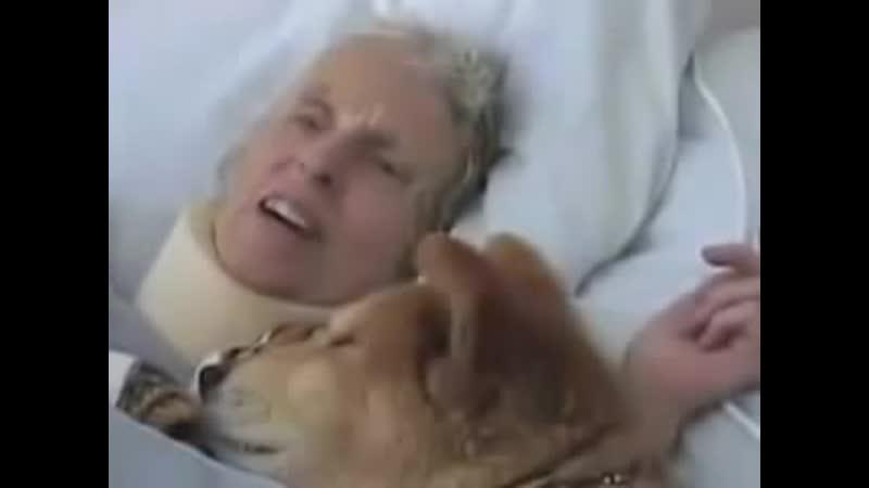 Baxter, le chien thérapeute