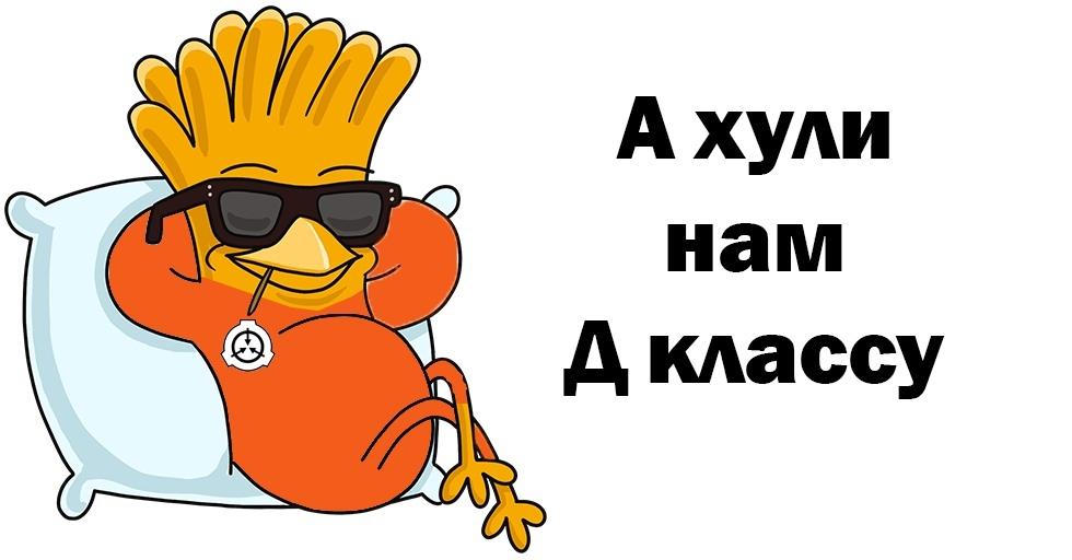 DkNMDx2ks38.jpg