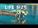 My Life Size Protoceratops! How I make a 6ft Dinosaur! Fiberglass