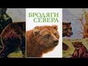 Бродяги Севера Семейный фильм о дружбе и верности щенка Мики и бурого медвежонка Неевы