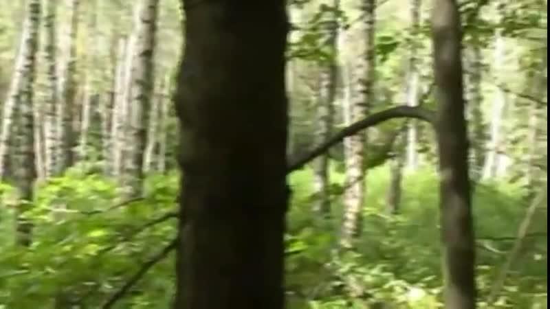 SpankBang_forestsidefuckers2maturewomanyoungboyrussian6russia_0729.mp4