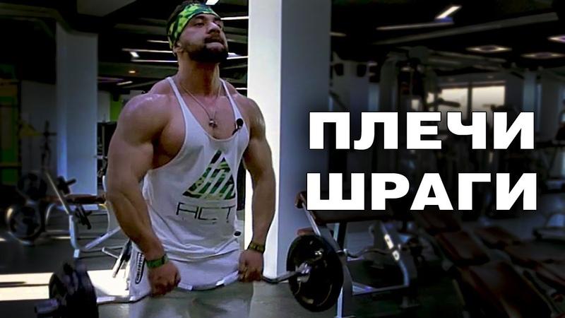 Как накачать большие и красивые плечи Плечи и шраги от Фирдавса Узакова