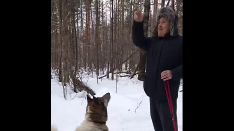 Встретили Минтимера Шаймиева на прогулке в лесу