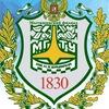 Абитуриенты МФ  МГТУ им.Н.Э. Баумана 2019